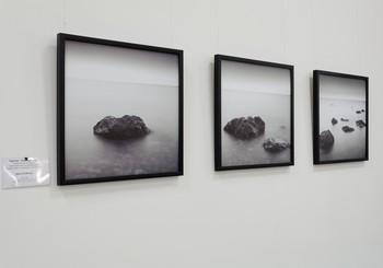 Открытие выставки Василия Куличенко